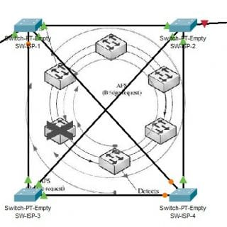 physical packet tracer metro carrierr